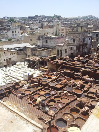 Moulay Abdellah Quarter: TANNERIES