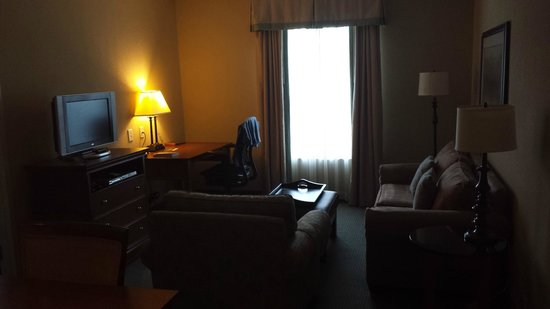 Homewood Suites Atlanta I-85-Lawrenceville-Duluth: Living room