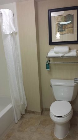 Homewood Suites Atlanta I-85-Lawrenceville-Duluth: Bathroom