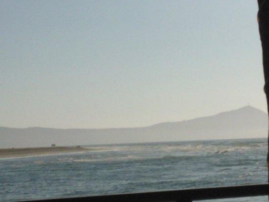 Estero Beach Hotel & Resort: The view
