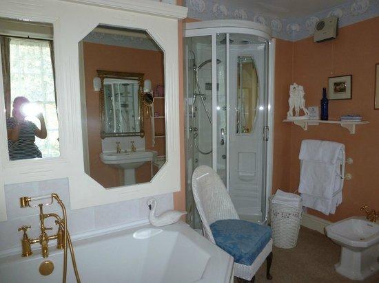 Glangrwyney Court: Bathroom