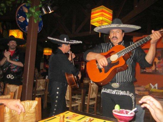 Guacamole Cocina Mexicana: mariachis
