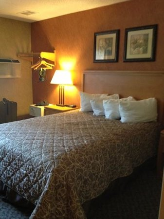 Days Inn Duluth/By Miller Hill Mall: Rm 230, queen bed, no closet but shows hanging bar on wall