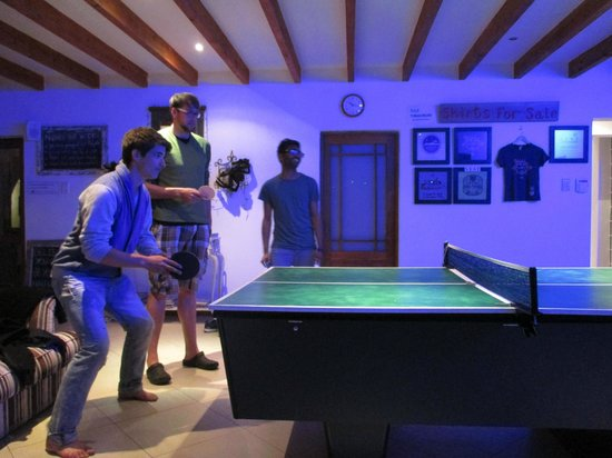 Atlantic Point Backpackers: Ping Pong Competition