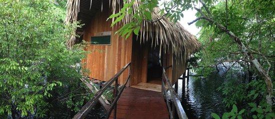 Juma Amazon Lodge: Vista da cabana especial