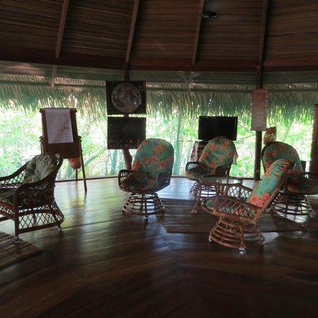 Juma Amazon Lodge: Recepção e bar