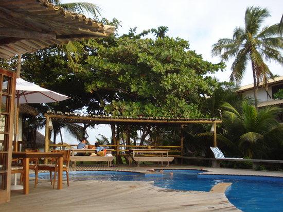 Pousada Farol das Tartarugas: Vista da piscina ...