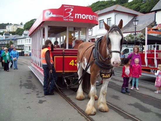 Douglas Bay Horse Tramway: Horse And Tram