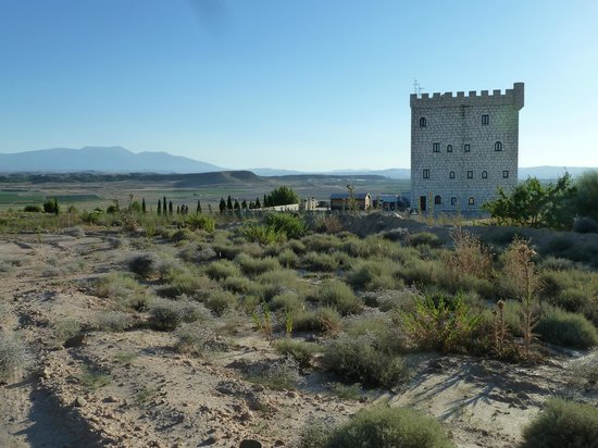 Bodega & Hotel Pago de Cirsus: Chateau and grounds