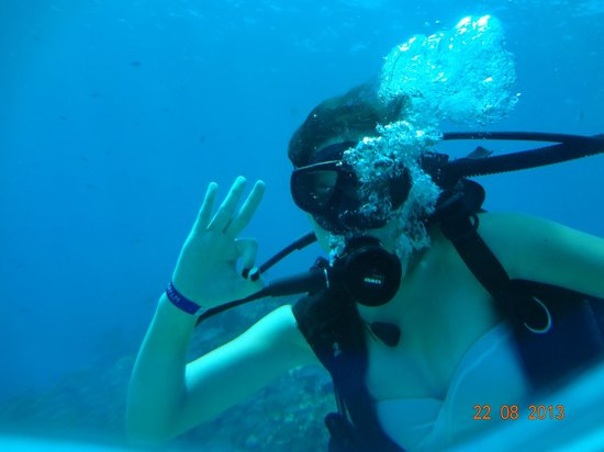 Coconut Divers: Mergulho nos corais