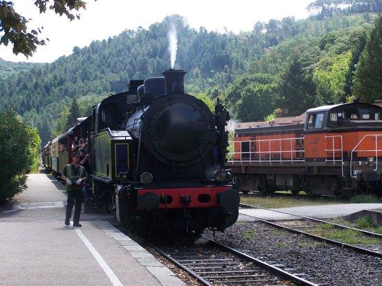 Apart'Hotel Les 4 Sources: Le train à vapeur des Cévennes