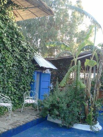 Berbari: Joli jardin