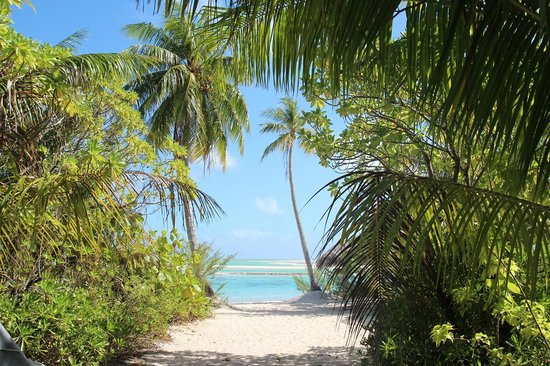 Tikehau Ninamu Resort : Approccio in spiaggia