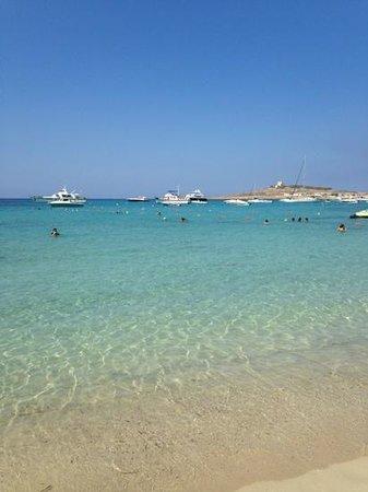 Mellieha, Malta: Armier Bay, Malta