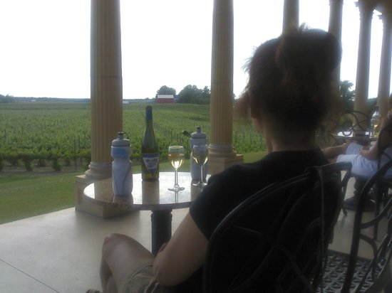 South River Vineyard: Sitting on the patio overlooking the vineyards