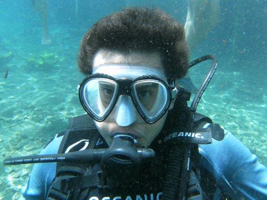 Media Luna School of Diving: Experiencia de buceo en Media Luna