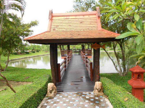 Horizon Village and Resort: One of the feeding points for the fishies