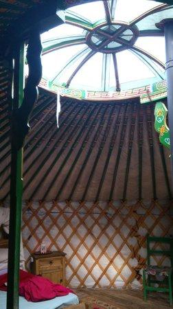 Cae Wennol Yurts: Celynnin