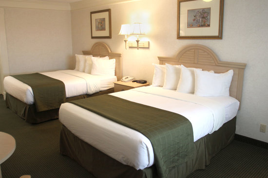 Quality Inn Marble Falls: Large Double Queens