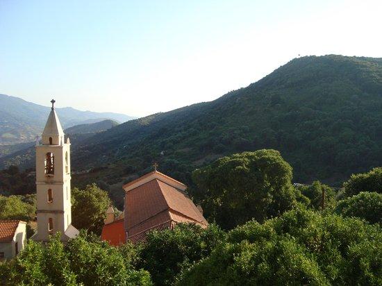 La Villa Guidi: vue de la chambre