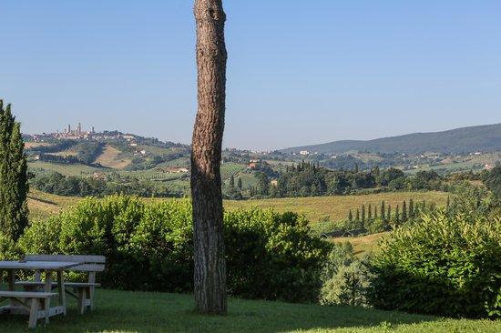 Tenuta Mormoraia: San Gimignano in the distance