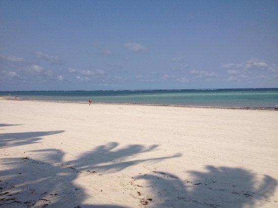 Neptune Paradise Beach Resort & Spa: spiaggia