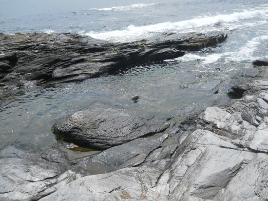 Beavertail Lighthouse and Park: Our own tidal pool to cool off in