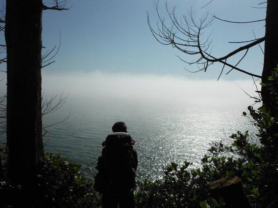 Juan de Fuca Marine Trail: Beautiful sunny view of the strait
