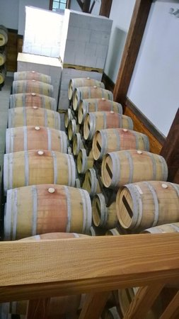 New Kent Winery: Red wine aging in barrels