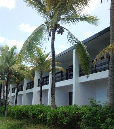 Turtle Cove Inn: Marina View