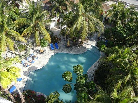 Turtle Cove Inn: Pool view