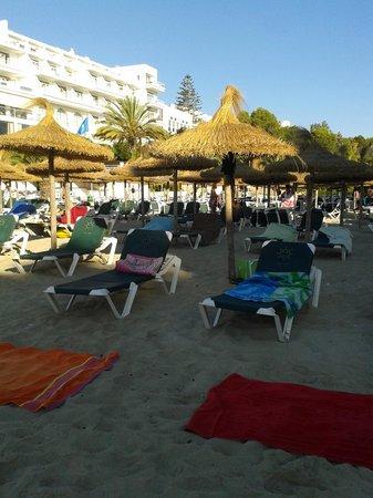 Prinsotel Alba Hotel Apartments: Spiaggia Cala Gran con ombrelloni