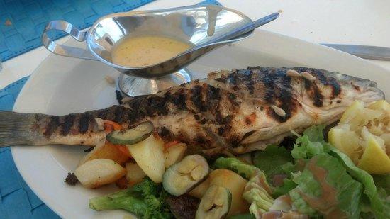 Mykonos Star Dining Veranda Restaurant