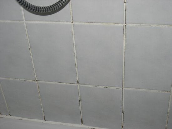 Katharinenhof Hotel Schleiden: schimmel in de badkamer