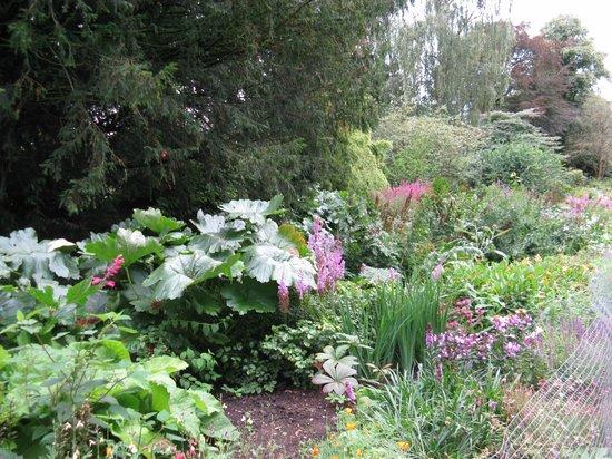 Dunham Massey Hall & Gardens : Canal side walk, herbaceous border.