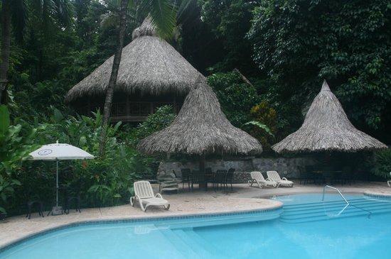Villas Pico Bonito: Pool & Ceiba tree lodge