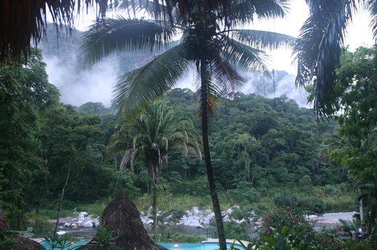 Villas Pico Bonito: View from the lodge