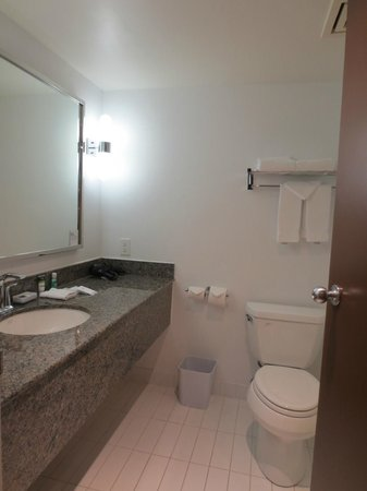 Four Points by Sheraton & Conference Centre Gatineau-Ottawa: Bathroom