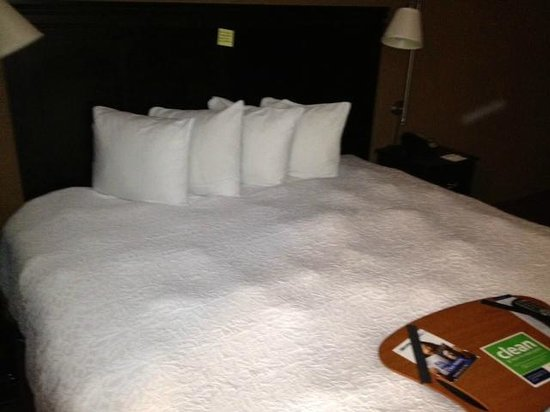 Hampton Inn & Suites Hoffman Estates: Hampton room bed