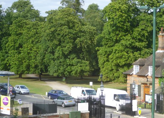 The Kings Arms Hotel : view from room - Bushy Park