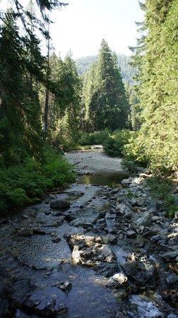 Plumas-Eureka State Park: jameson creek fro the bridge