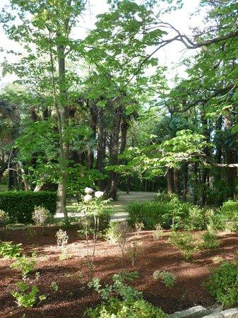 Le Chateau des Alpilles : Gardens