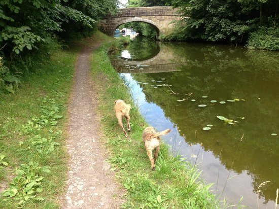 Lancaster Canal: The canal near to the Hand and Dagger