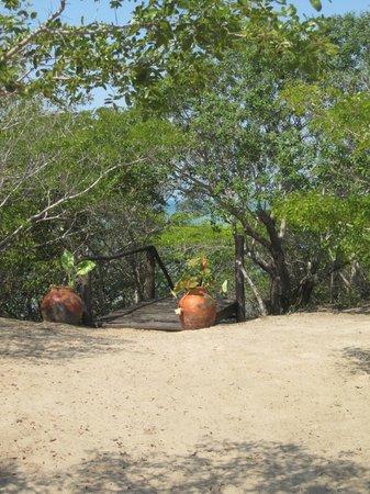 Marimba Secret Gardens : On the way to the beach