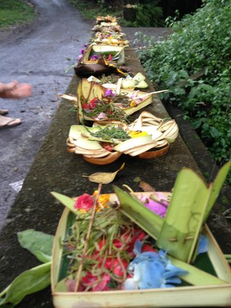 Taman Rahasia Tropical Sanctuary & Spa: offerings