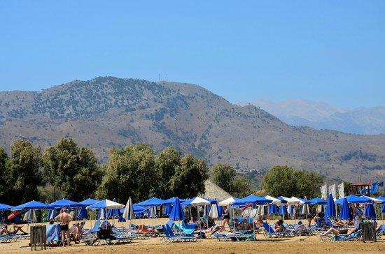 Hotel Delfina Beach : El área de sombrilllas y sillas en la playa.