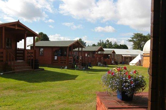 Pinewood Park: Cabins