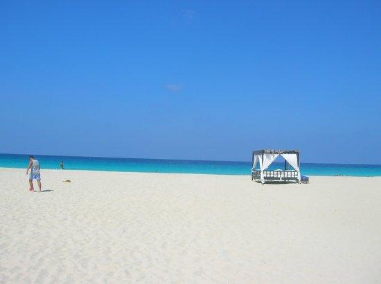 Jaz Almaza Beach Resort: spiaggia-mare