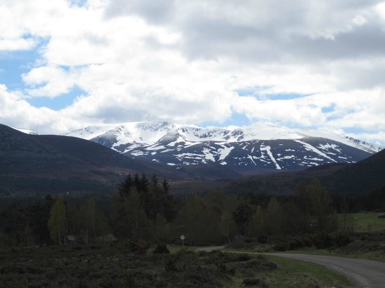 Highland Holiday Cottages : Cairngorms in May 2010