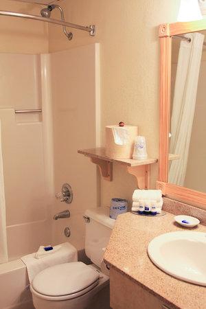 Best Western Plus Windjammer Inn & Conference Center : clean bathroom